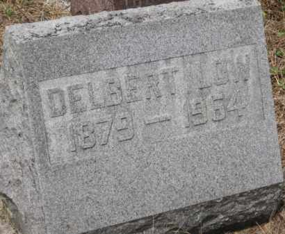 LOW, DELBERT - Holmes County, Ohio | DELBERT LOW - Ohio Gravestone Photos
