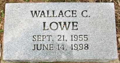 LOWE, WALLACE C. - Holmes County, Ohio | WALLACE C. LOWE - Ohio Gravestone Photos