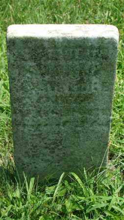 LUKE, SAMUEL - Holmes County, Ohio | SAMUEL LUKE - Ohio Gravestone Photos