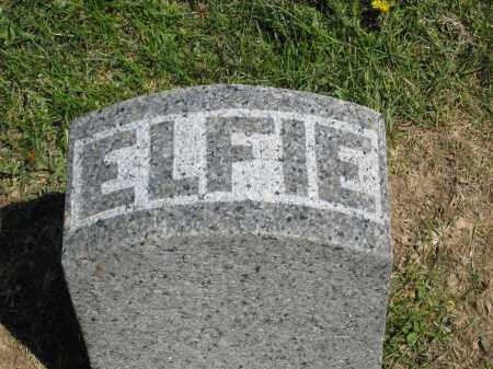 MAXWELL, ELFIE - Holmes County, Ohio | ELFIE MAXWELL - Ohio Gravestone Photos