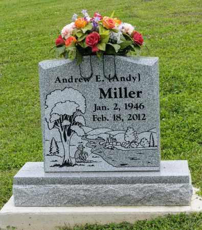 MILLER, ANDREW E - Holmes County, Ohio | ANDREW E MILLER - Ohio Gravestone Photos