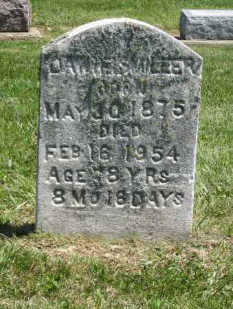 MILLER, DANIEL S - Holmes County, Ohio | DANIEL S MILLER - Ohio Gravestone Photos