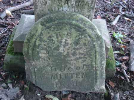 MITTEN, ELIZABETH - Holmes County, Ohio | ELIZABETH MITTEN - Ohio Gravestone Photos