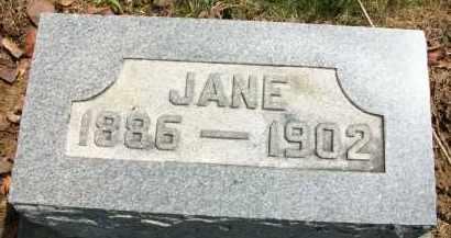 MORELAND, JANE - Holmes County, Ohio | JANE MORELAND - Ohio Gravestone Photos