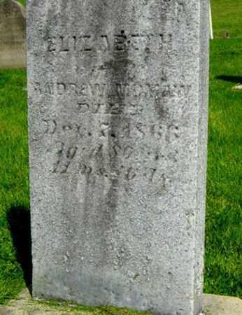 MUMAW, ELIZABETH - Holmes County, Ohio | ELIZABETH MUMAW - Ohio Gravestone Photos