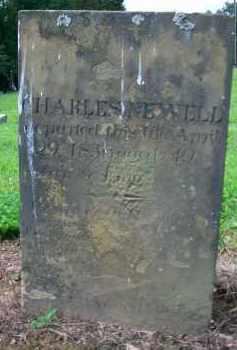 NEWELL, CHARLES - Holmes County, Ohio   CHARLES NEWELL - Ohio Gravestone Photos