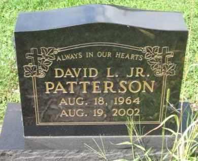 PATTERSON, DAVID L. - Holmes County, Ohio | DAVID L. PATTERSON - Ohio Gravestone Photos