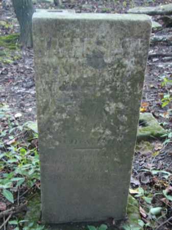 PIATS, JAMES H. - Holmes County, Ohio   JAMES H. PIATS - Ohio Gravestone Photos