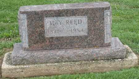 REED, MAY - Holmes County, Ohio | MAY REED - Ohio Gravestone Photos