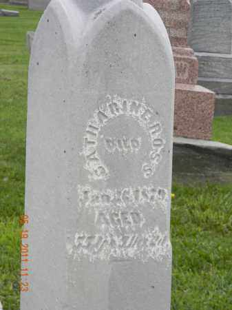 ROSS, CATHARINE - Holmes County, Ohio | CATHARINE ROSS - Ohio Gravestone Photos
