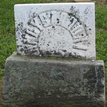 SADDORIS, _ANDY - Holmes County, Ohio | _ANDY SADDORIS - Ohio Gravestone Photos