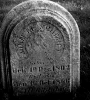 SCHMIDT, JOHAN M. - Holmes County, Ohio | JOHAN M. SCHMIDT - Ohio Gravestone Photos