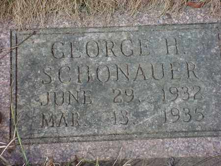 SCHONAUER, GEORGE H - Holmes County, Ohio | GEORGE H SCHONAUER - Ohio Gravestone Photos