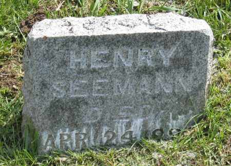 SEEMANN, HENRY - Holmes County, Ohio | HENRY SEEMANN - Ohio Gravestone Photos