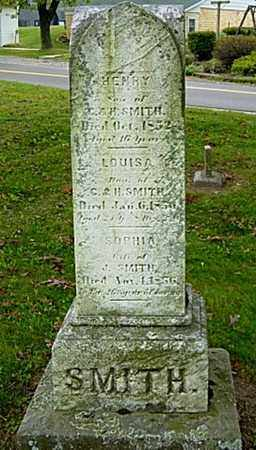 SMITH, SOPHIA - Holmes County, Ohio | SOPHIA SMITH - Ohio Gravestone Photos