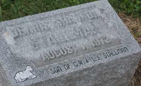 STALLMAN, DENNIS SHANNON - Holmes County, Ohio | DENNIS SHANNON STALLMAN - Ohio Gravestone Photos