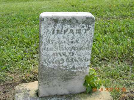 SWOVERLAND, INFANT DAU - Holmes County, Ohio | INFANT DAU SWOVERLAND - Ohio Gravestone Photos