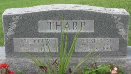 SCOTT THARP, HESTER M. - Holmes County, Ohio | HESTER M. SCOTT THARP - Ohio Gravestone Photos