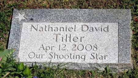 TILLER, NATHANIEL DAVID - Holmes County, Ohio | NATHANIEL DAVID TILLER - Ohio Gravestone Photos