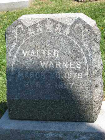 WARNES, WALTER - Holmes County, Ohio | WALTER WARNES - Ohio Gravestone Photos