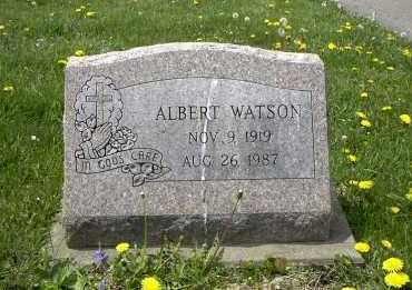 WATSON, ALBERT - Holmes County, Ohio | ALBERT WATSON - Ohio Gravestone Photos