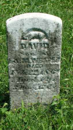 WENSE, DAVID - Holmes County, Ohio | DAVID WENSE - Ohio Gravestone Photos
