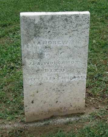 WOLGAMOT, ANDREW - Holmes County, Ohio | ANDREW WOLGAMOT - Ohio Gravestone Photos