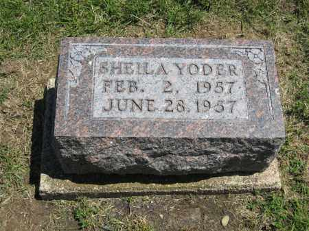 YODER, SHEILA - Holmes County, Ohio | SHEILA YODER - Ohio Gravestone Photos