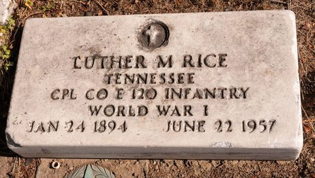 RICE, LUTHER M - Huron County, Ohio | LUTHER M RICE - Ohio Gravestone Photos