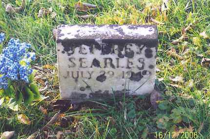 SEARLES, JEFFREY - Jackson County, Ohio | JEFFREY SEARLES - Ohio Gravestone Photos