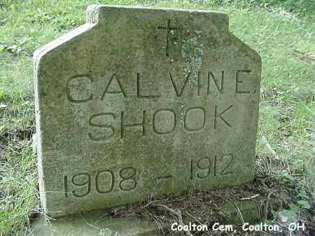 SHOOK, CALVIN - Jackson County, Ohio | CALVIN SHOOK - Ohio Gravestone Photos