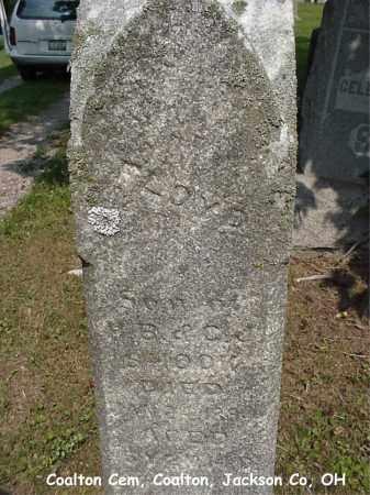 SHOOK, FLOYD - Jackson County, Ohio | FLOYD SHOOK - Ohio Gravestone Photos