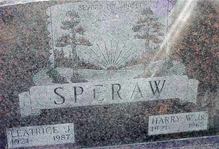 SPERAW, HARRY W. JR - Jackson County, Ohio | HARRY W. JR SPERAW - Ohio Gravestone Photos
