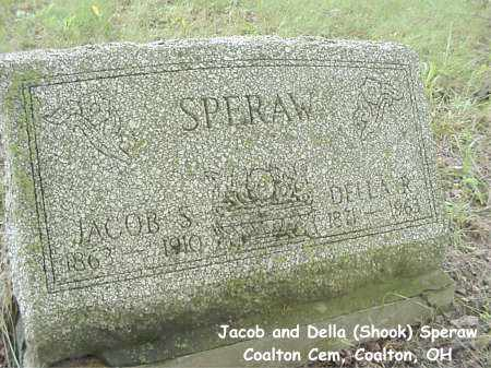 SPERAW, DELLA - Jackson County, Ohio | DELLA SPERAW - Ohio Gravestone Photos