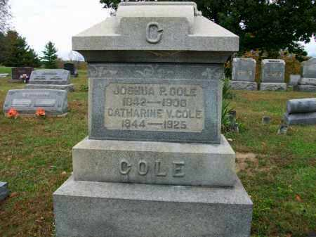 VORHES COLE, CATHARINE - Jefferson County, Ohio | CATHARINE VORHES COLE - Ohio Gravestone Photos