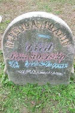 M'CAMIS, REBECCA - Jefferson County, Ohio | REBECCA M'CAMIS - Ohio Gravestone Photos