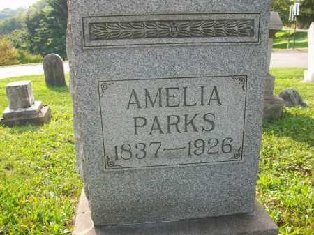 PARKS, AMELIA - Jefferson County, Ohio | AMELIA PARKS - Ohio Gravestone Photos