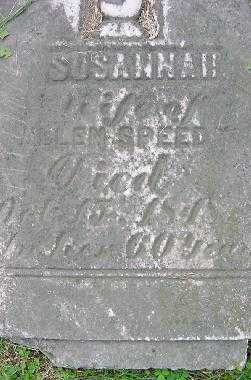 SPEEDY, SUSANNAH - Jefferson County, Ohio | SUSANNAH SPEEDY - Ohio Gravestone Photos