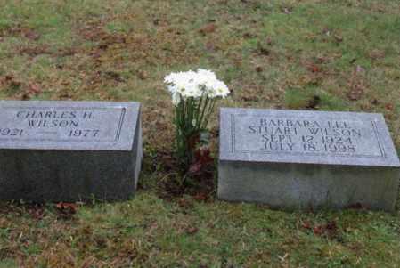 WILSON, CHARLES - Jefferson County, Ohio   CHARLES WILSON - Ohio Gravestone Photos