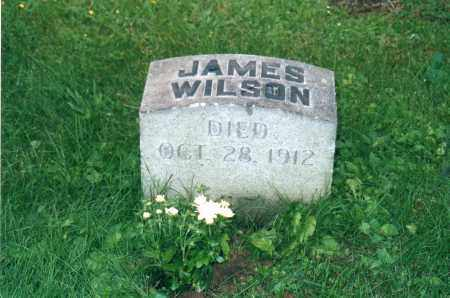WILSON, JAMES LAFAYETTE - Jefferson County, Ohio | JAMES LAFAYETTE WILSON - Ohio Gravestone Photos