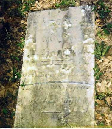 BROWN, BARBARY - Knox County, Ohio | BARBARY BROWN - Ohio Gravestone Photos