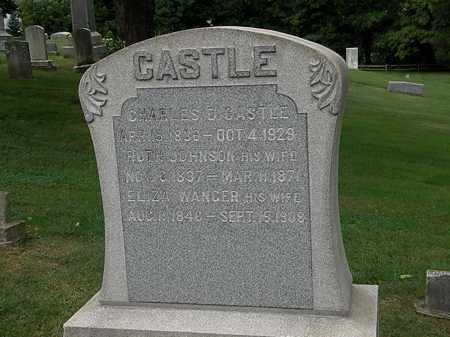 CASTLE, CHARLES D. - Lake County, Ohio | CHARLES D. CASTLE - Ohio Gravestone Photos
