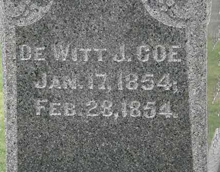 COE, DEWITT J. - Lake County, Ohio | DEWITT J. COE - Ohio Gravestone Photos