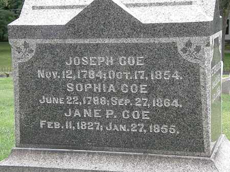 COE, SOPHIA - Lake County, Ohio | SOPHIA COE - Ohio Gravestone Photos