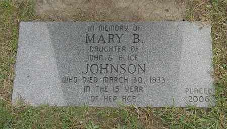 JOHNSON, MARY B. - Lake County, Ohio | MARY B. JOHNSON - Ohio Gravestone Photos