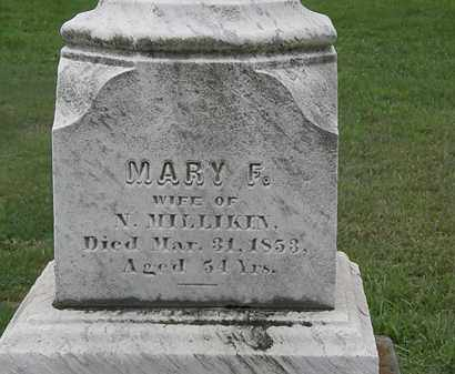 MILLIKIN, MARY E. - Lake County, Ohio | MARY E. MILLIKIN - Ohio Gravestone Photos
