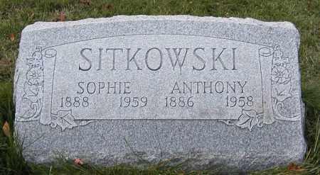 DARDZINSKI SITKOWSKI, SOPHIE M. - Lake County, Ohio | SOPHIE M. DARDZINSKI SITKOWSKI - Ohio Gravestone Photos