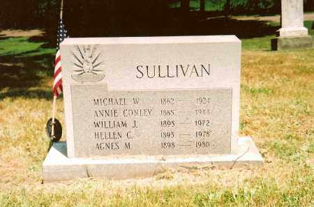 SULLIVAN, MICHAEL W - Lake County, Ohio | MICHAEL W SULLIVAN - Ohio Gravestone Photos