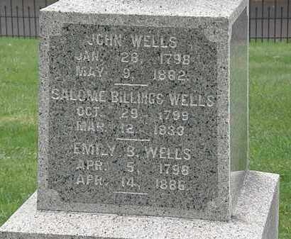 WELLS, JOHN - Lake County, Ohio | JOHN WELLS - Ohio Gravestone Photos