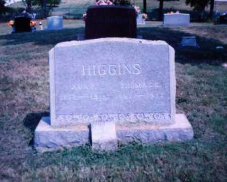 HIGGINS, THOMAS G. - Lawrence County, Ohio | THOMAS G. HIGGINS - Ohio Gravestone Photos